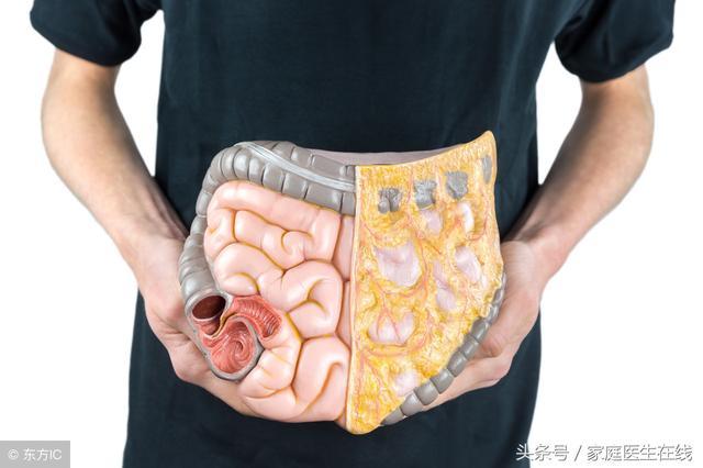 內臟脂肪比贅肉更可怕!身體有這三個表現,你的內臟脂肪超標了