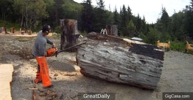這名男子在海邊撿到一顆無人問津的枯木,用電鋸鋸開後竟出現大家都搶著要的「兩隻神秘生物」!