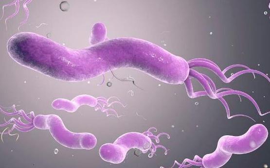 它是幽門桿菌的「對頭」,每天喝幾口,胃病和口臭全趕跑!