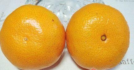 橘子還分公母?母橘子才更好吃!果農教你個小竅門,一挑一個準