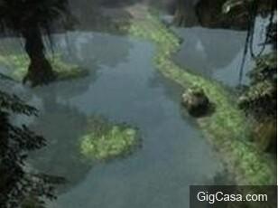 震撼!秘魯11歲男童不小心掉進食人魚池...撈上只剩一堆白骨頭!!!(膽小者請勿看!內有視頻)