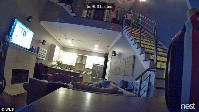 他們調閱監視器時發現家裡有小偷潛入,但他偷完後卻「默默站在樓梯上15分鐘」…原因太毛了!