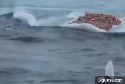 漁民捕魚時發現奇怪異象,海鳥群飛,沒想到下一秒發現驚人的一幕