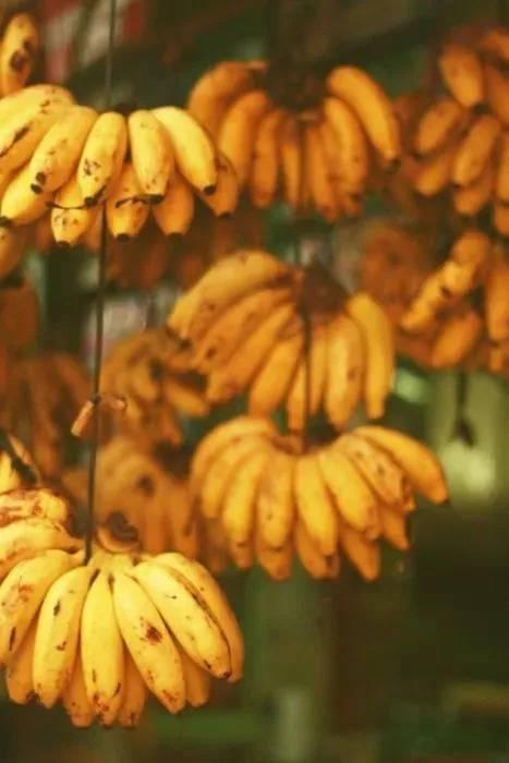 常吃這10種水果,一覺睡到天亮不失眠!不要再吃安眠藥咯!