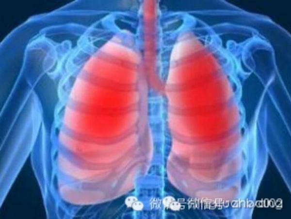 吸菸的人該吃什麼清肺?(為父親,丈夫,吸菸的朋友轉,會長壽幾十年)