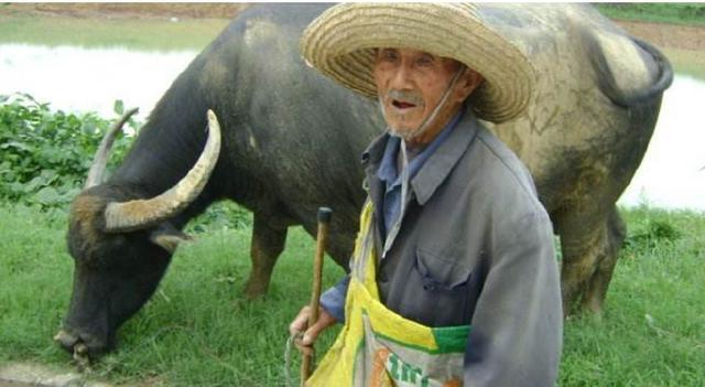 68歲大爺每天晚上含一片薑入睡,一個星期後,變化很大