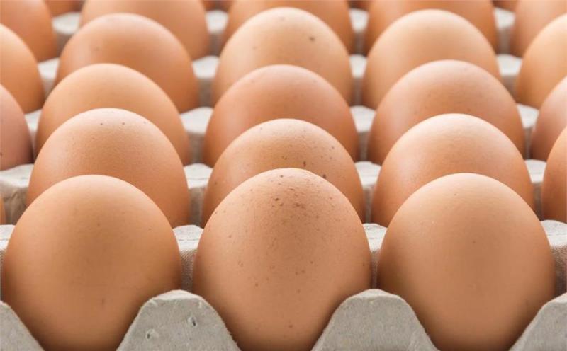雞蛋雖好,蛋白質很高,但醫生告誡:這5種人少吃雞蛋