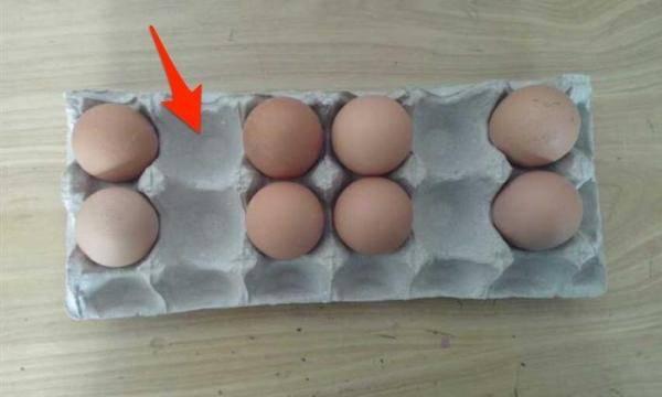 不用的「雞蛋紙托盤」千萬不要丟!沒想到這個凹洞可以這樣用....