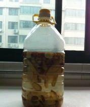 這種飲料叫【紅棗酵素】在家自己做,簡單自製,經常喝治腰痛,喝出好氣色
