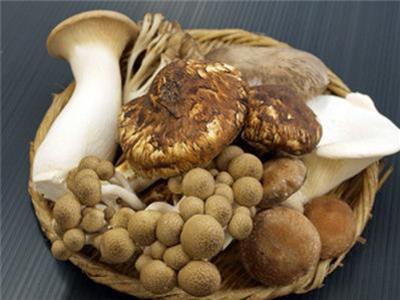 9種常見食材最有效「鎖住新鮮及營養的正確保存方法」,尤其事第4種,很實用!!天啊~原來直接放進冰箱才是最笨的辦法~~