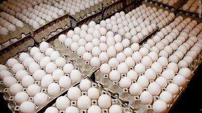 雞蛋洗不洗,世界分兩派