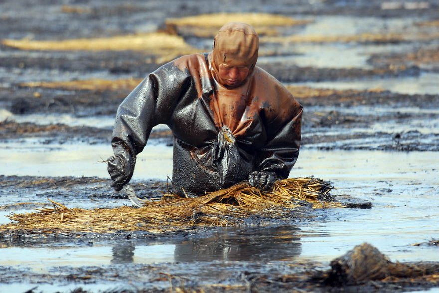 Man Cleans Up Oil Spill In Dalian Port, Liaoning