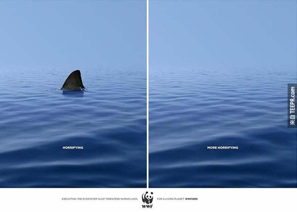 2.) WWF – 哪一個比較可怕?有鯊魚還是沒有鯊魚?